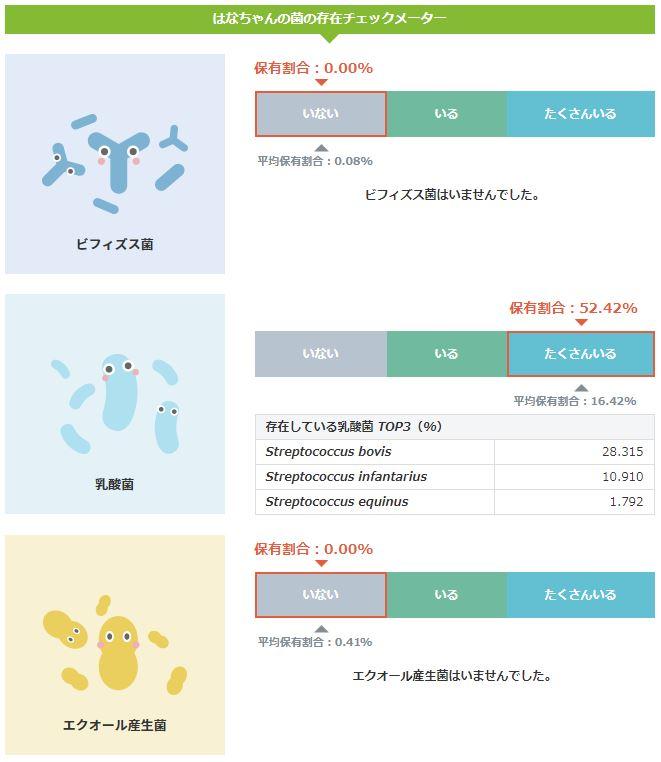 腸内フローラ測定(ハリネズミ)